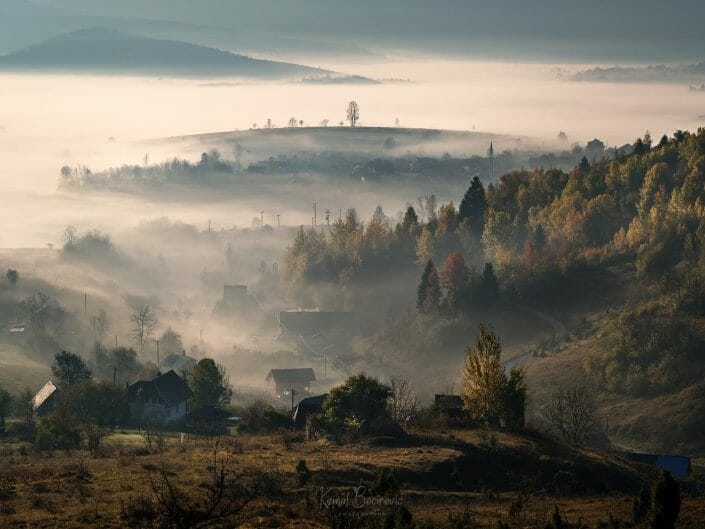 The Bosnian pastoral No.1