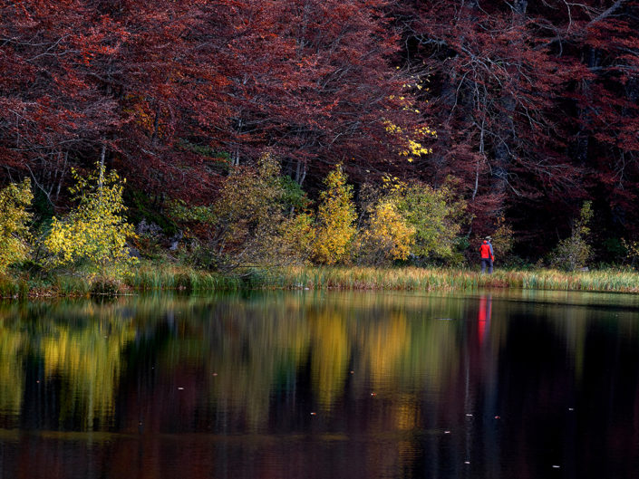 Na jezeru, Donje bare